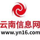 云南信息网